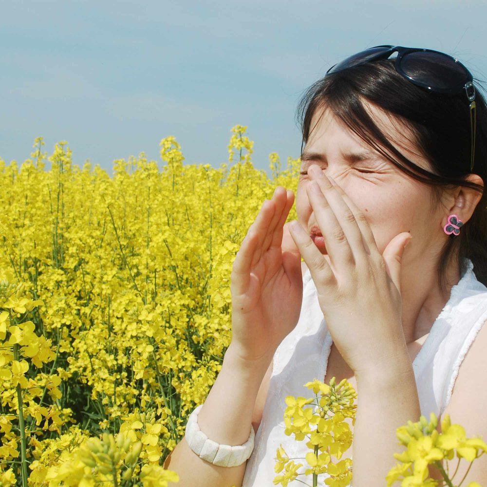 Alergología en Xalapa con Acupuntura